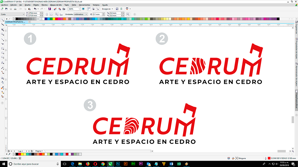 chair logos, logo witch chair, logos chair, logos sillas, logo cedrum